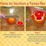 How to Section Grapefruit Graphic - with background