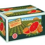 Rio Star Grapefruit  19