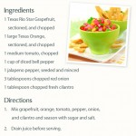 Texas Citrus Salsa - simple